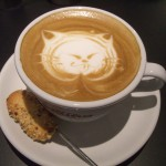 Vancouver may get its own cat cafe.